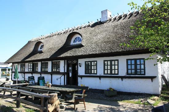 Vesterlyng Camping: Pub exterior