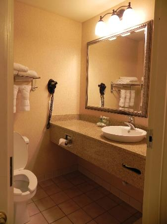 Country Inn & Suites by Radisson, Atlanta Airport North, GA : Very clean bath area with amenities!