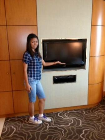 pan pacific manila a very small flat screen tv - Small Flat Screen Tv