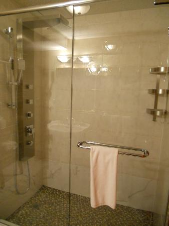 Auberge du Vieux-Port: Jetted Glass Shower
