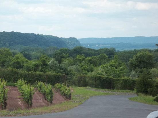 Tastings and Tours: Bucks County: View from Sand Castle Winery