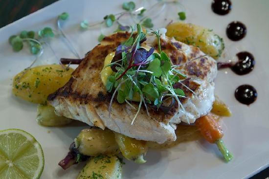 Lewishams Cafe & Restaurant : Fish of the day