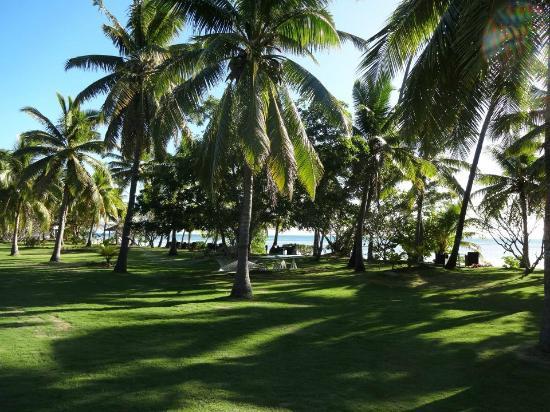 Lomani Island Resort: Grounds
