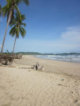 Harmony Hotel Nosara: Though the woods and to the beach it's just a few minutes