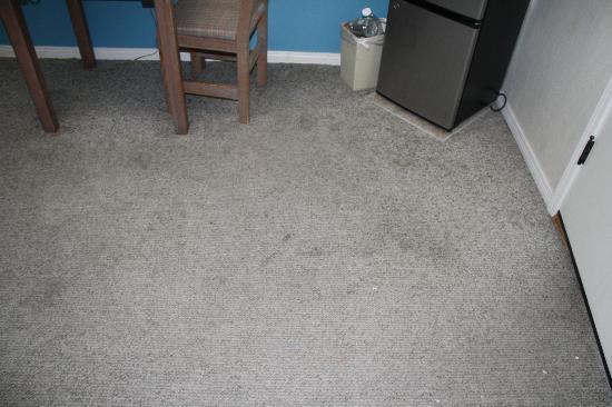 Sedona Motel: Dirty, worn out carpet