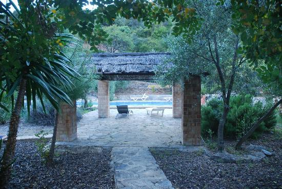 Casas Rurales Los Algarrobales: The way to the pool