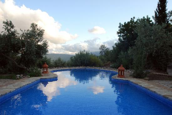 Casas Rurales Los Algarrobales: The pool and the view