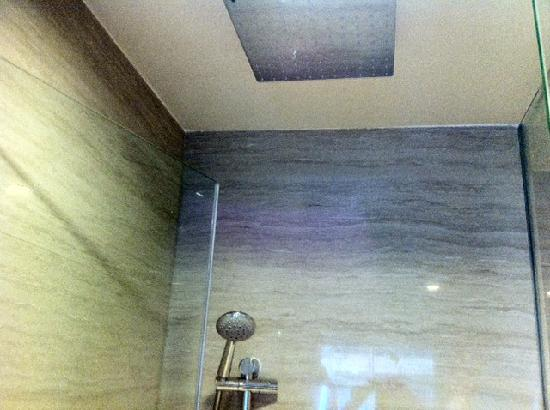 Gran Melia Jakarta: Shower head options