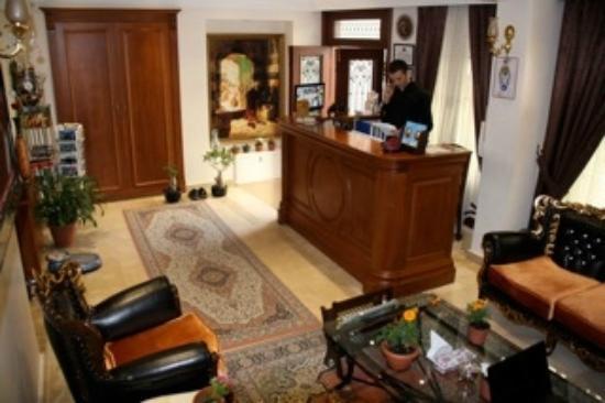 Blue Istanbul Hotel: Reception
