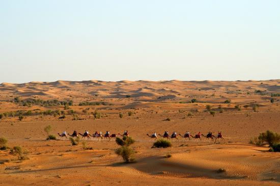 Al Maha, A Luxury Collection Desert Resort & Spa: Camel Trekking