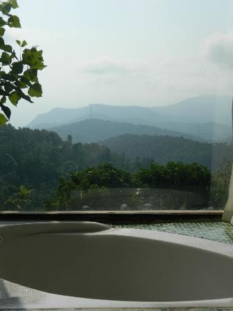 Citrus Thekkady Wild Corridor: view from the room