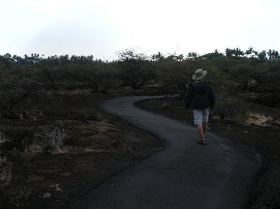 Mauna Lani Historic Park : 夕方に行きましたがほとんど人がいない