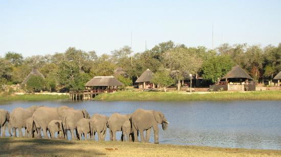 Arathusa Safari Lodge: View from across the lake