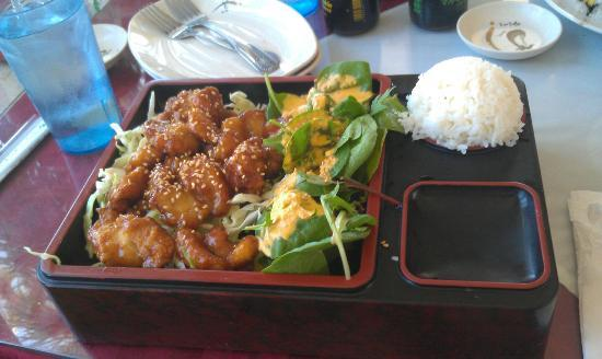 Mizu: Terriyaki Chicken