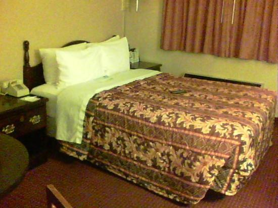 Clarion Inn & Suites: Super small bed