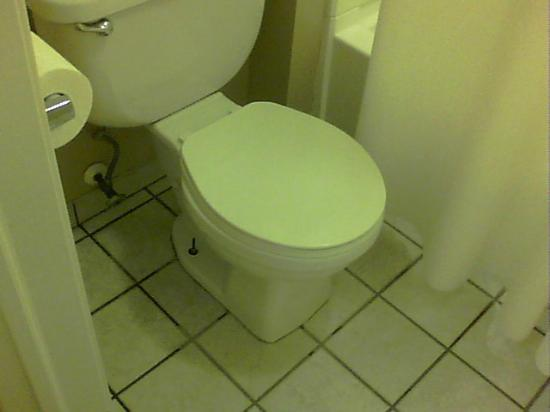 Clarion Inn & Suites: Toilet that leaked at base