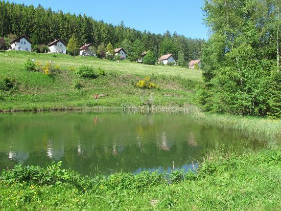 Chalets de la Vigotte : un des étangs, avec vue sur l'arrière des chalets