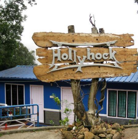 Hollyhock: Entrance