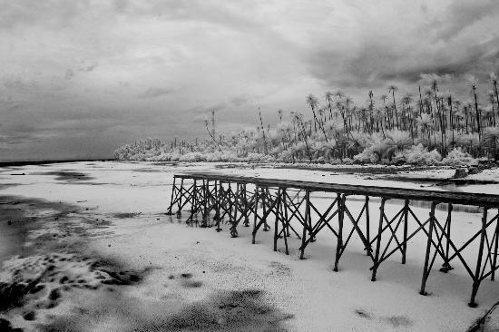 Maratua Paradise Resort: unused pathway