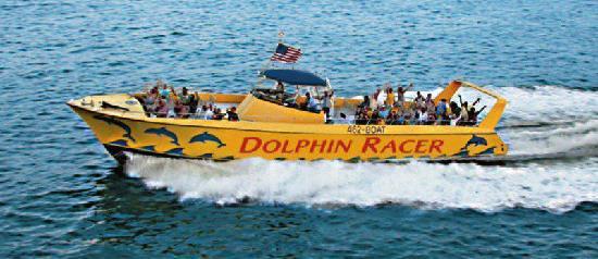 Dolphin Racer
