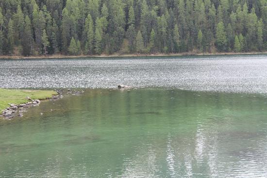 Lake of Staz (Lej da Staz): una riva