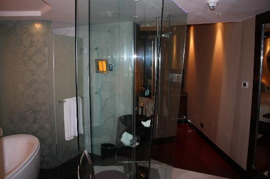 sofitel mumbai bkc clean bathroom room