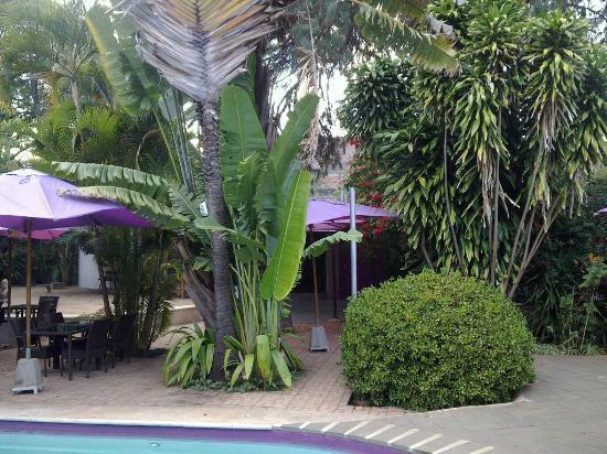 AKOA hôtel : Inside garden