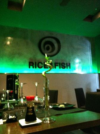 rice & fish