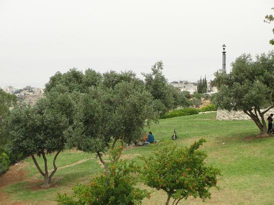 Tayelet Haas Promenade: View from Promenade
