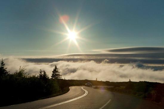 Cadillac Mountain: Low cloud near top of Cadilac Mountain