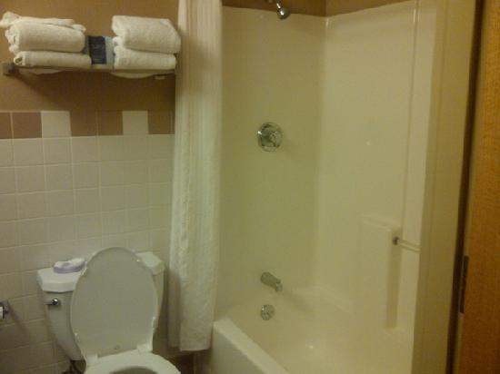 Choctaw Casino Resort: Choctaw Inn Bathroom