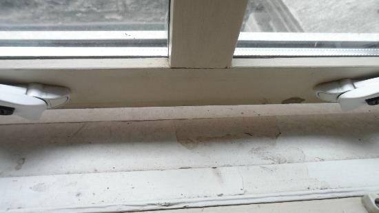 Rooms at 29 Bruce Street: windowsill