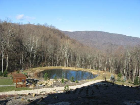 House Mountain Inn: The pond