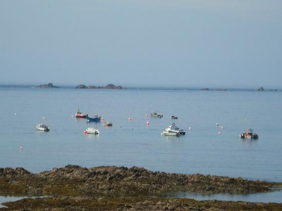 Ilex Lodge Self Catering Apartments: A view from the seaside