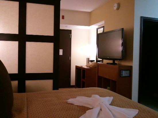 Hyatt Place Philadelphia / King of Prussia: View from the bedroom area