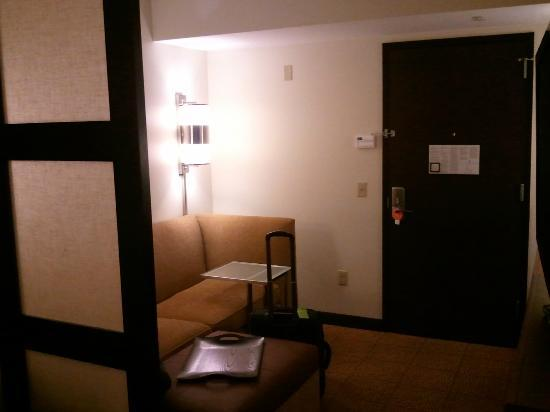 Hyatt Place Philadelphia / King of Prussia: Living room area