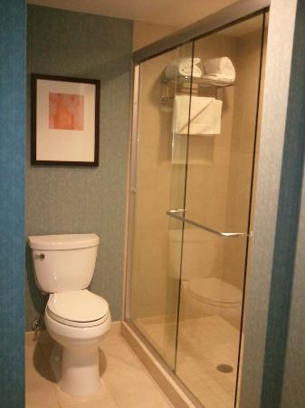 Hyatt Place Philadelphia / King of Prussia: Walk-in Shower