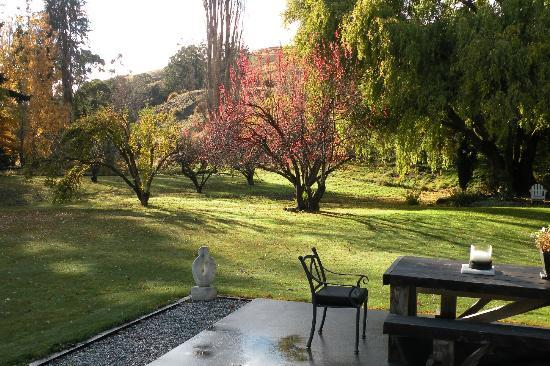 Waiorau Homestead: Autumn apple trees in the back garden