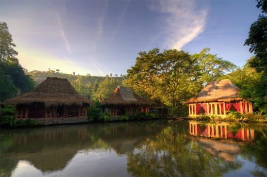 Imah Seniman: The villas surrounding the lake