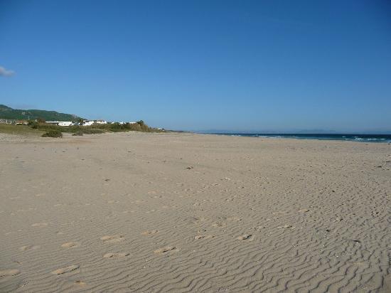 Playa de Bolonia: Bolonia