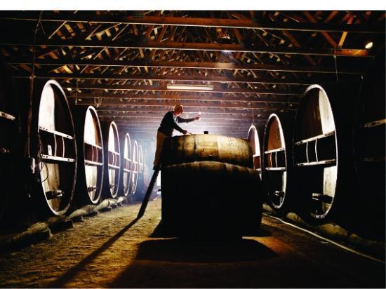 Pieter van Gent Winery & Vineyard: Tasting Hall