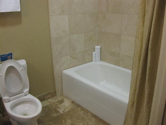 West Inn & Suites Carlsbad: Bathroom