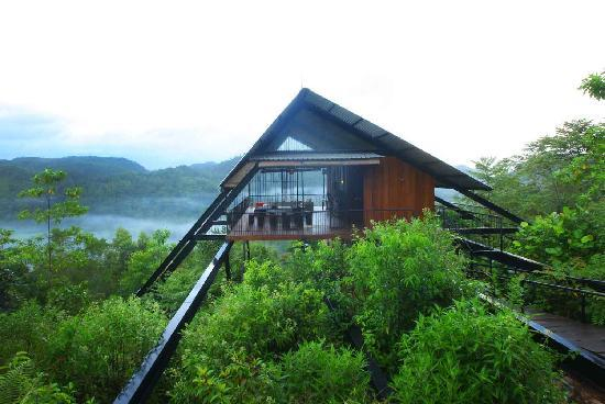 Matugama, ศรีลังกา: The Ark