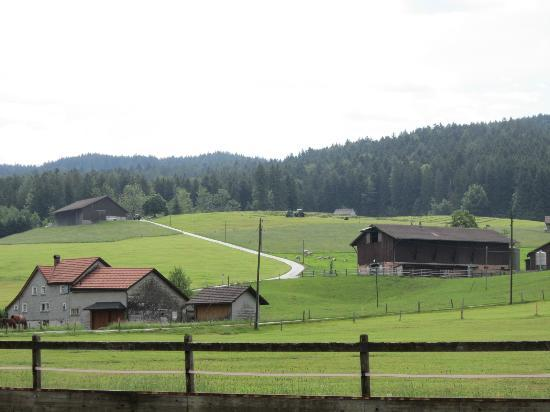 Bären - Das Gästehaus: Une vue depuis jardin