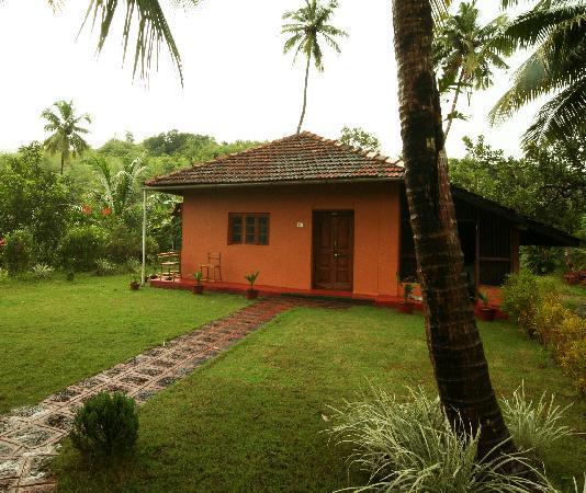 Nandan Farm Homestay