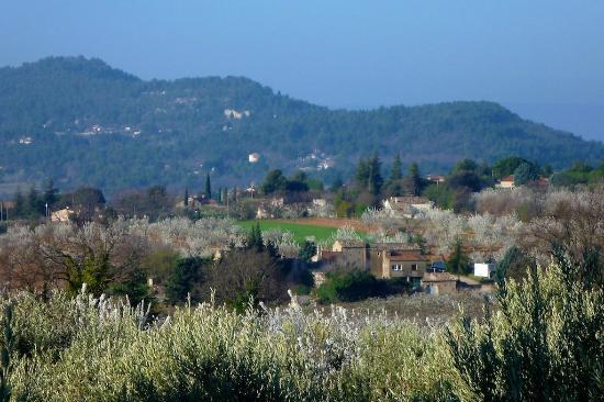 Les Oliviers & Les Cerisiers: Region