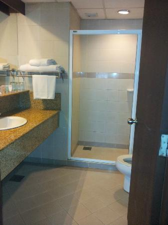 Crown Regency Serviced Suites: common toilet