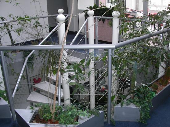Altstadthotel: Central stairwell