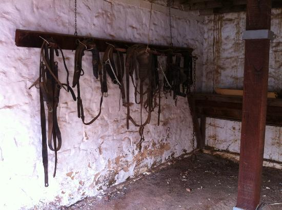 York Courthouse Complex: Old riding tack from the constabulary stables