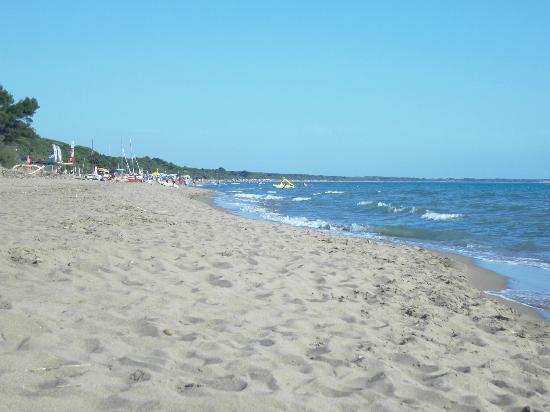 Corte dei Butteri: spiaggia antistante l'albergo